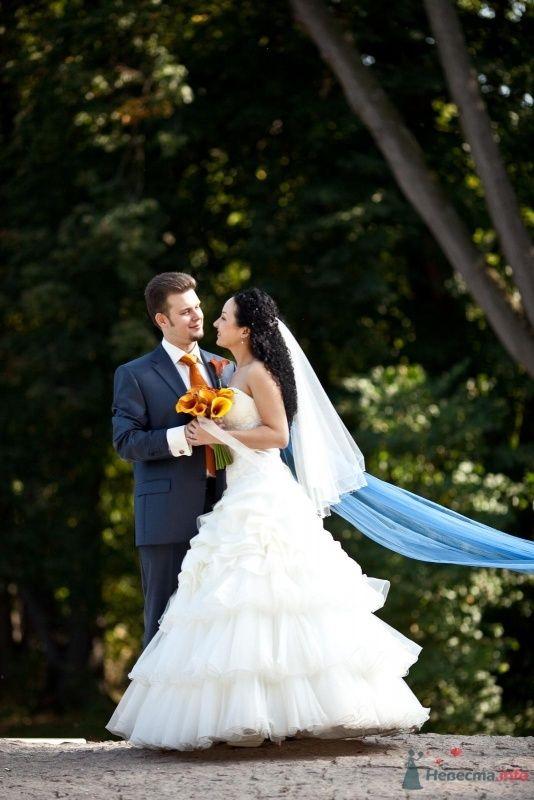 Фото 46676 в коллекции наша свадьба - Pantera25