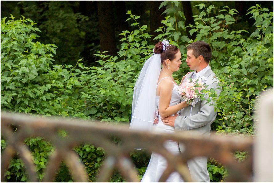 Фото 2794041 в коллекции Свадьба Ольги и Романа - Фотограф Надежда Карелина
