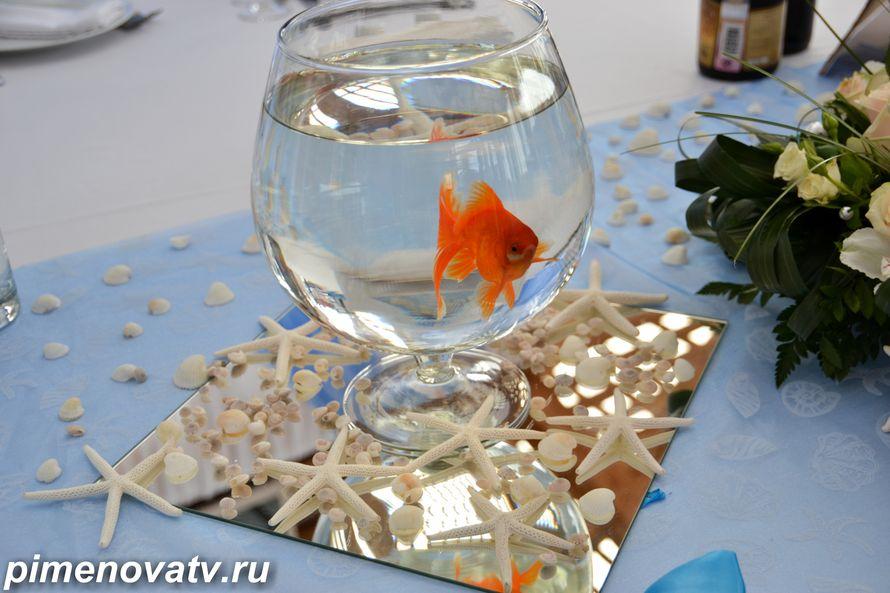 Поздравление на свадьбу к подарку золотая рыбка