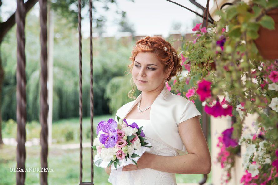 Фото 2874325 в коллекции Мои фотографии - Фотограф Ольга Андреева