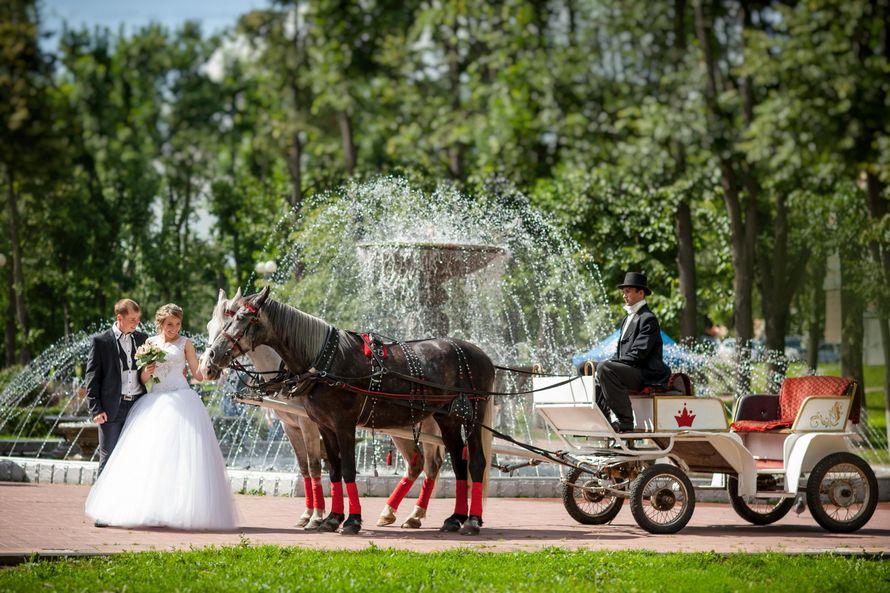 Счастливая свадьба - фото 10394858 Ведущая Наталья Смирнова