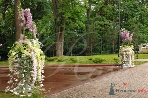 """Фото 17831 в коллекции Арки, уличное оформление - Галерея цветов """"L'Rose"""""""