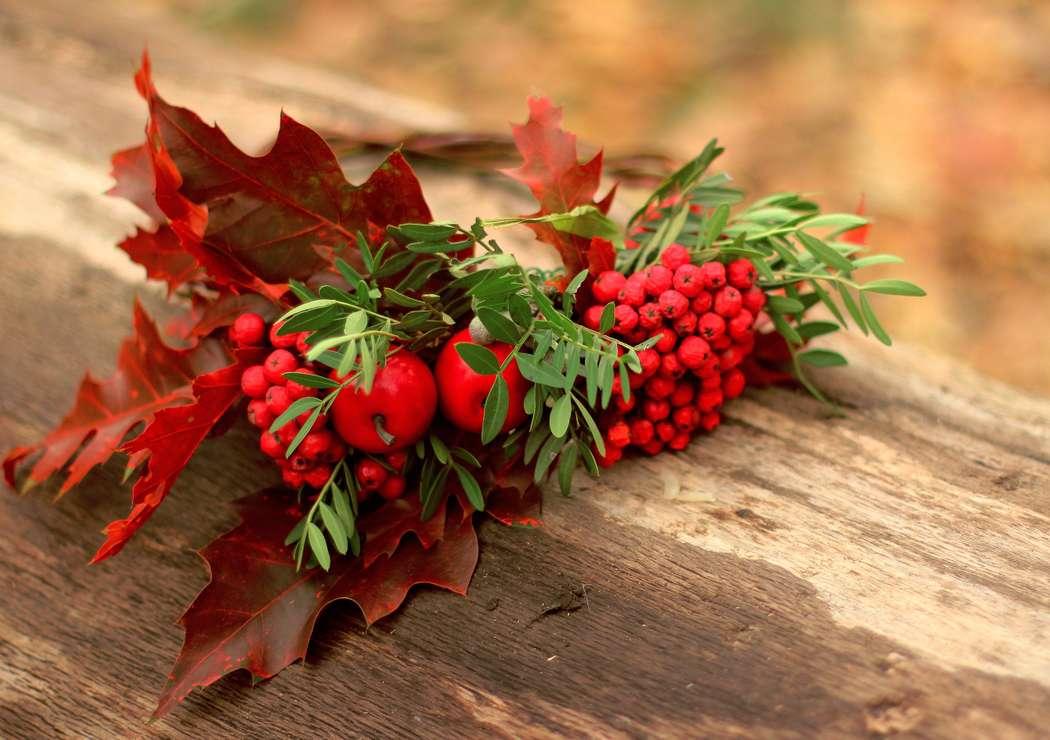 Картинка кленовые листья и рябина