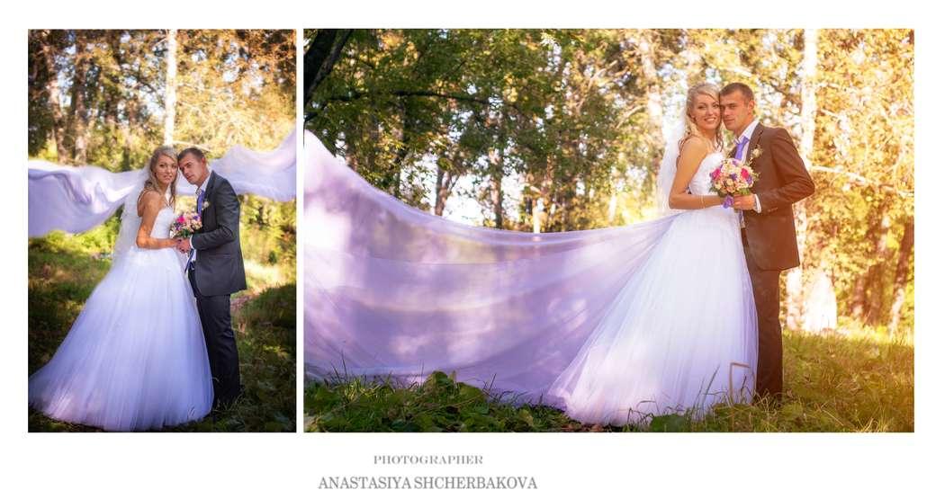 Фото 3082417 в коллекции Мои фотографии - Фотограф Анастасия Щербакова