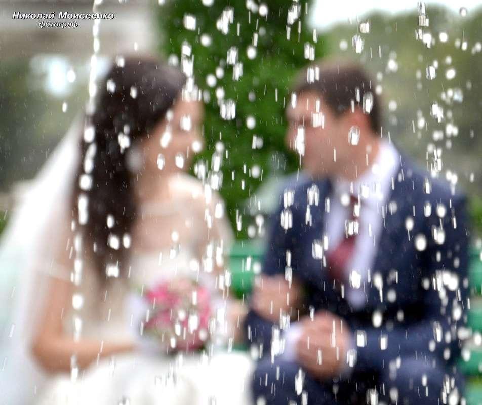 Фото 3102523 в коллекции Мои фотографии - Свадебный фотограф Николай Моисеенко