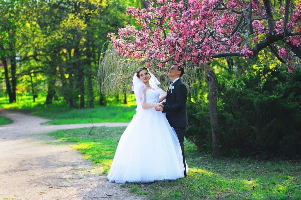 ищем фотографа на свадьбу симферополь