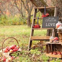 Фото: Таша Морозова Декор и флористика: Bride Tips