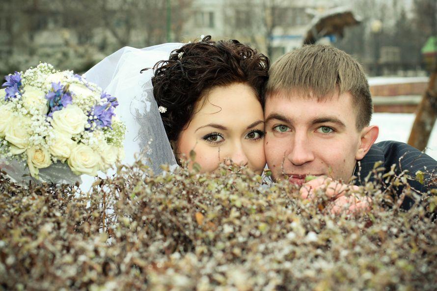Фото 3168517 в коллекции Мои фотографии - Фотограф Ольга Проскурина