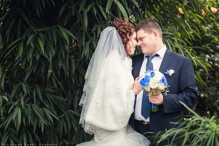Фото 3193419 в коллекции Мои фотографии - Свадебный фотограф Денис Неплюев