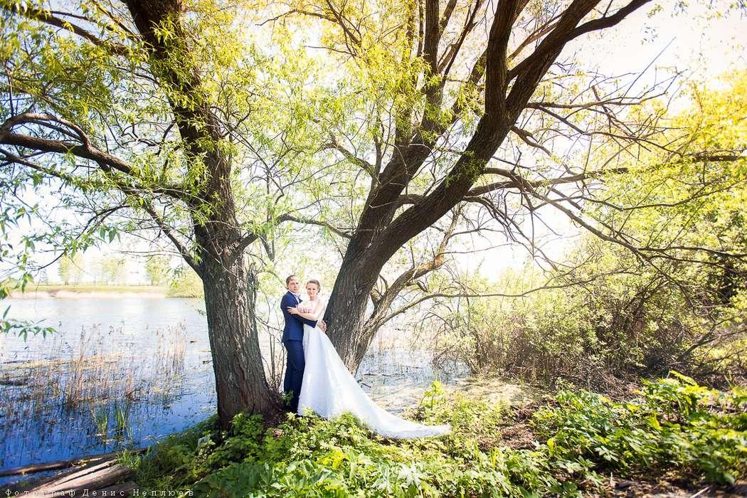 Жених и невеста стоят, прислонившись друг к другу, возле большого дерева в лесу - фото 3650739 Свадебный фотограф Денис Неплюев