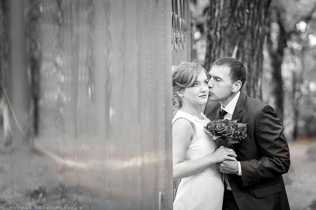 Фото 3650771 в коллекции Портфолио - Свадебный фотограф Денис Неплюев