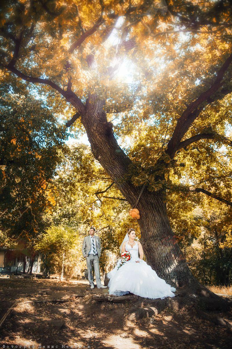 Фото 3650779 в коллекции Портфолио - Свадебный фотограф Денис Неплюев