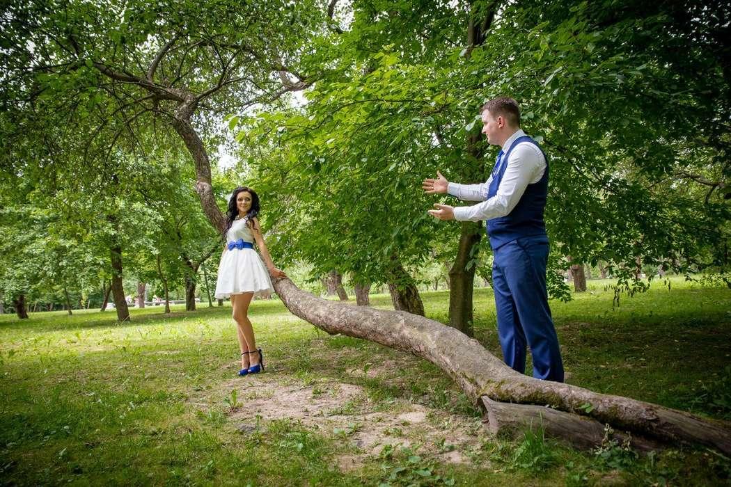 Фото 16978288 в коллекции Свадьбы - Фотограф Дмитрий Гайдук