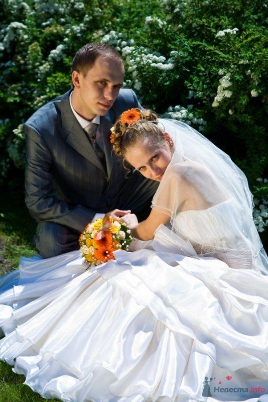 Фото 59804 в коллекции Свадьба - Max&Kate