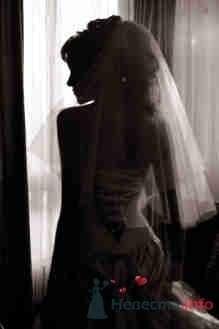 Фото 19848 в коллекции Свадебный-T - Невеста01