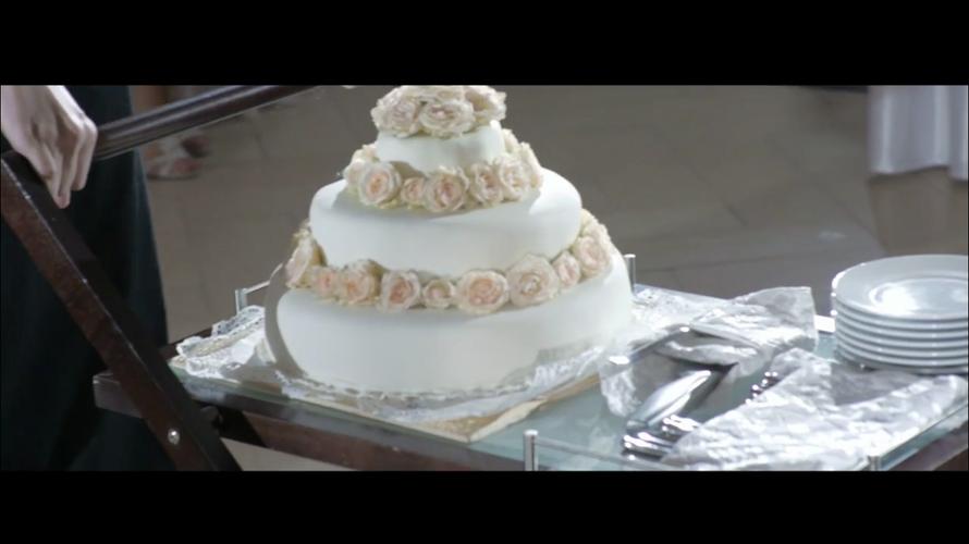 Дима и Алиса | Wedding highlights - фото 3261791 ArtVi Видеосъемка