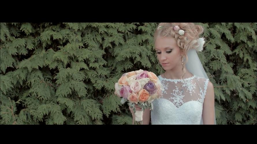 Дима и Алиса | Wedding highlights - фото 3261819 ArtVi Видеосъемка