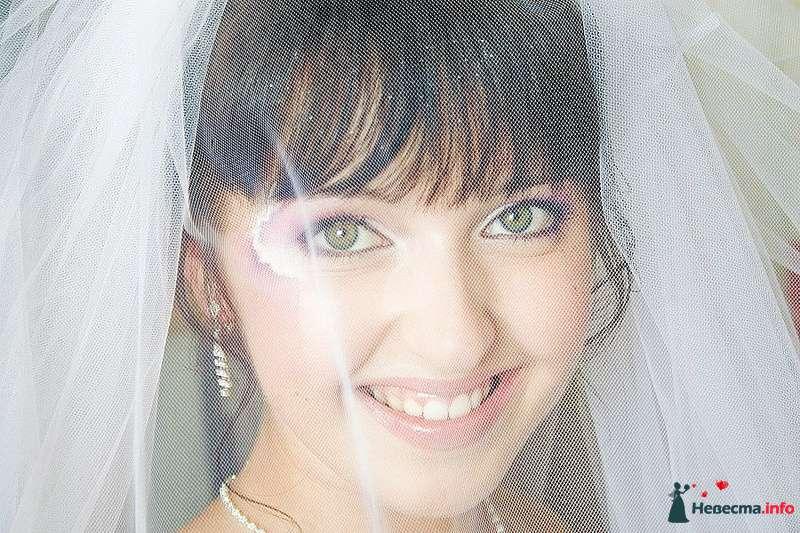 Фото 210699 в коллекции Фотографии со свадеб - Портрет-холл. Студия фотопортрета.