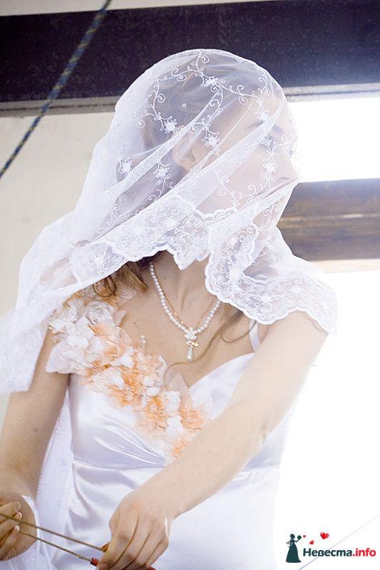 Фото 239470 в коллекции Фотографии со свадеб - Портрет-холл. Студия фотопортрета.