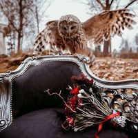 """Черный диван """"Севилья"""" с уникальной резьбой по дереву и обивкой из декорированной кожи удивит Ваших гостей"""