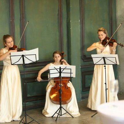 Выступление музыкального трио на свадебной регистрации или фуршете