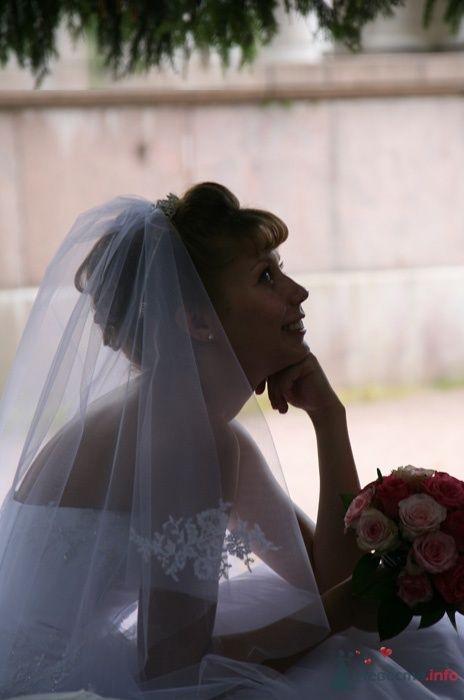 Фото 33007 в коллекции Свадьба   Паши и Маши - Marat Yakhin