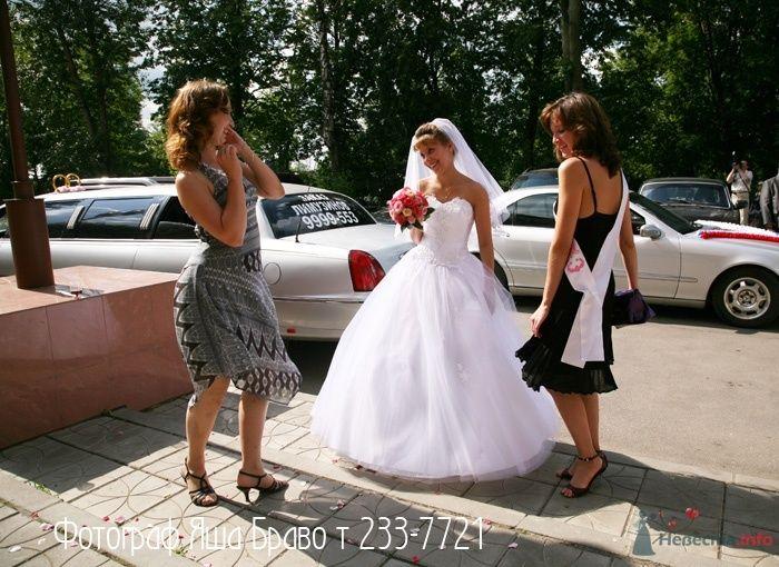 Фото 33018 в коллекции Свадьба   Паши и Маши - Marat Yakhin