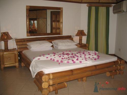 Фото 39737 в коллекции Медовый месяц на Мальдивах