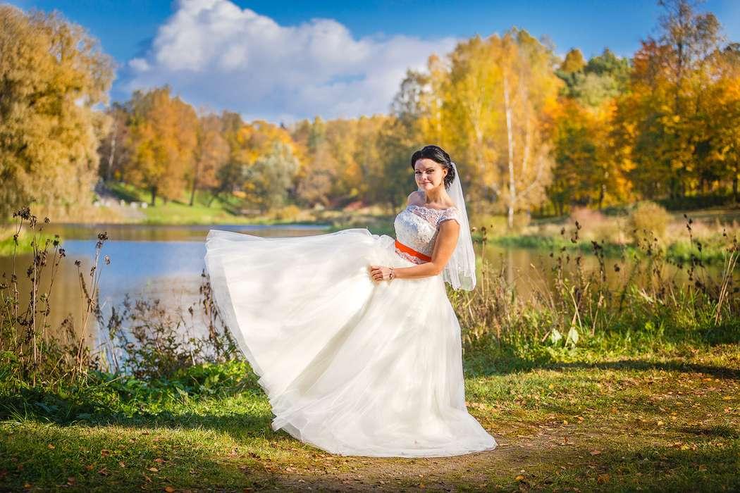 Фото 3650339 в коллекции Портфолио - Фотограф Дмитрий Мельников