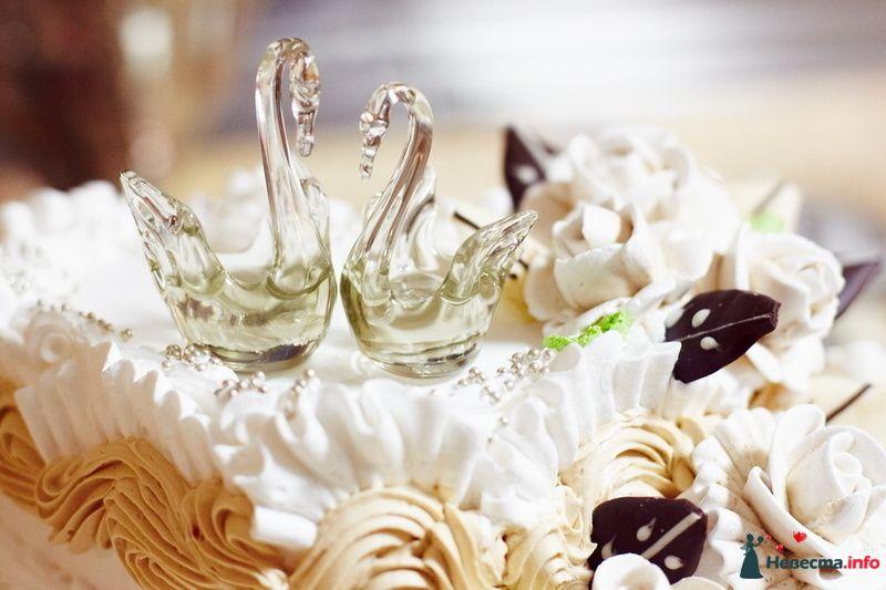 Свадебный тортик, в белой мастике, украшенный кремом и двумя фигурками хрустальных лебедей  - фото 232304 Фотограф Роман Клыков
