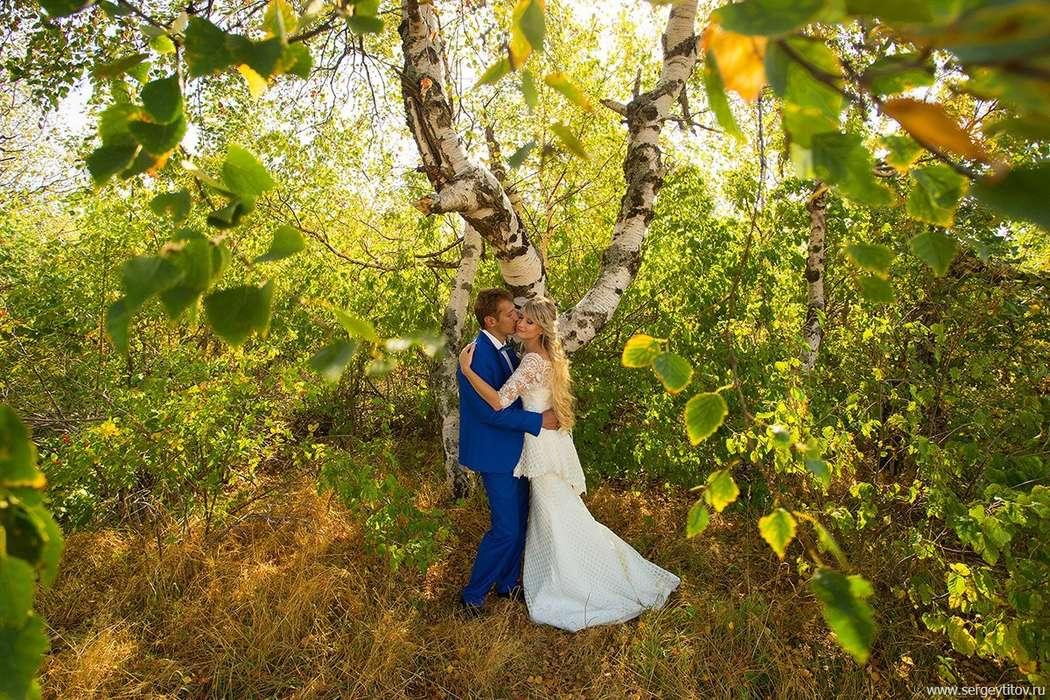 Фото 13070120 в коллекции Свадебные - Фотограф Сергей Титов
