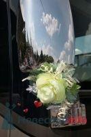 Милое украшение. Фотограф Ирина Бруй. - фото 30166 Шикарус - аренда эксклюзивного транспорта