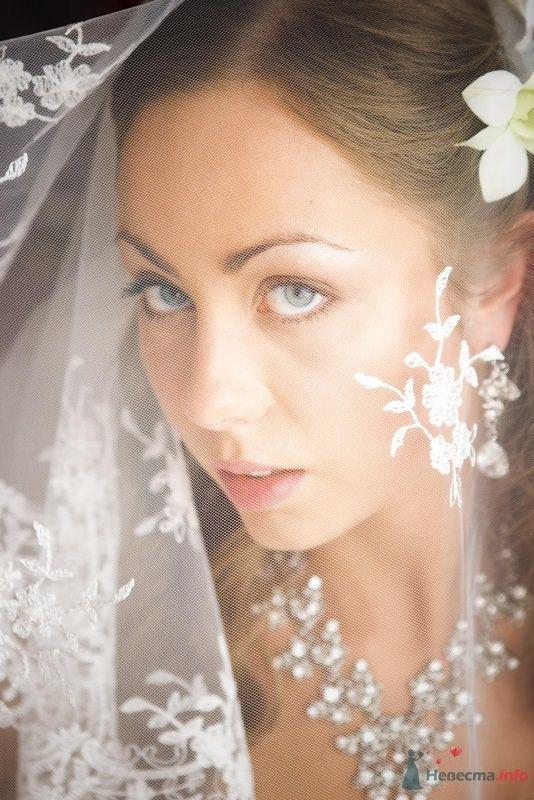 Фото 52413 в коллекции свадьба  - Arina
