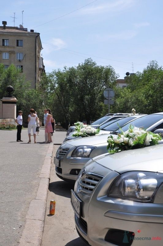 Фото 34758 в коллекции Наша свадьба - Катринка@Leopardik