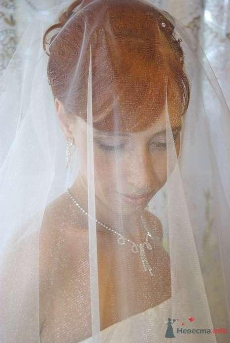 Фото 35273 в коллекции Наша свадьба - Катринка@Leopardik