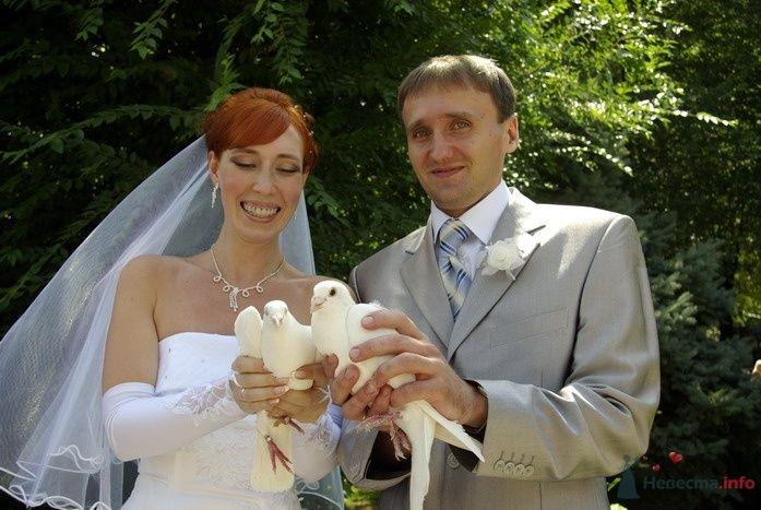 Фото 35292 в коллекции Наша свадьба - Катринка@Leopardik