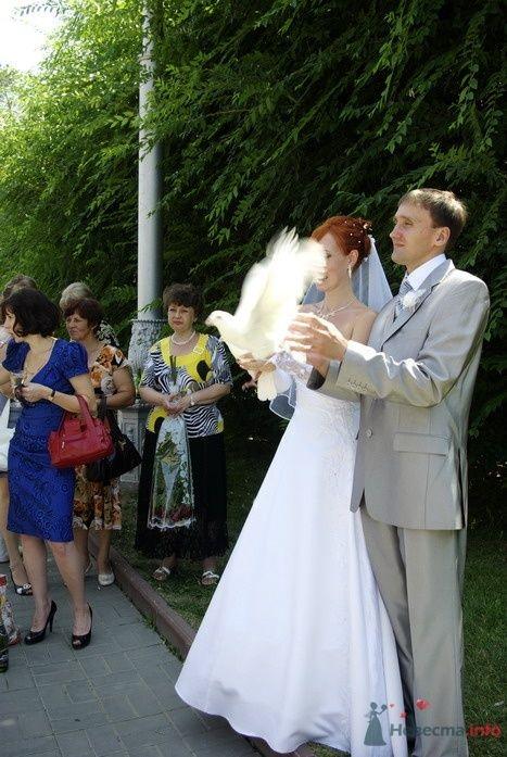 Фото 35294 в коллекции Наша свадьба - Катринка@Leopardik