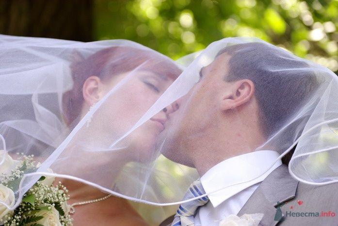 Фото 35302 в коллекции Наша свадьба - Катринка@Leopardik