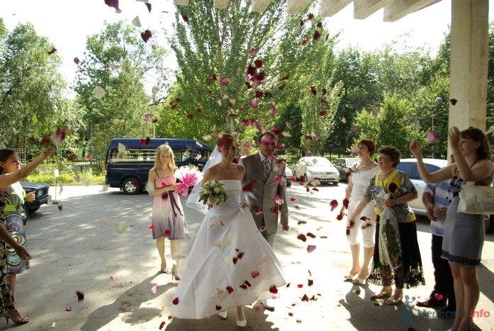 Фото 35311 в коллекции Наша свадьба