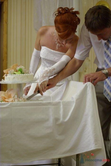 Фото 35349 в коллекции Наша свадьба - Катринка@Leopardik