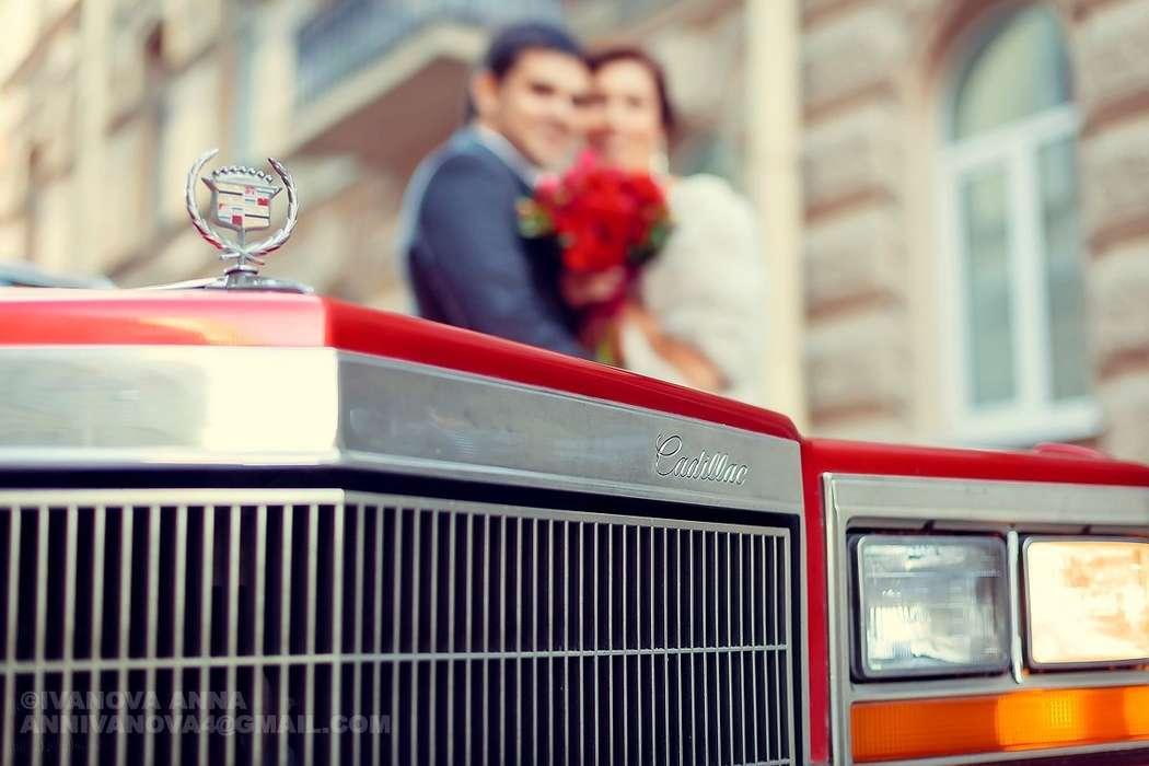Свадебный фотограф Анна Киреева   +79215909183 - фото 10767036 Фотограф Анна Киреева