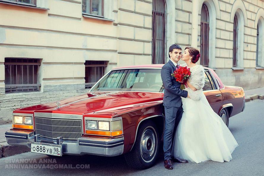 Свадебный фотограф Анна Киреева   +79215909183 - фото 10767042 Фотограф Анна Киреева