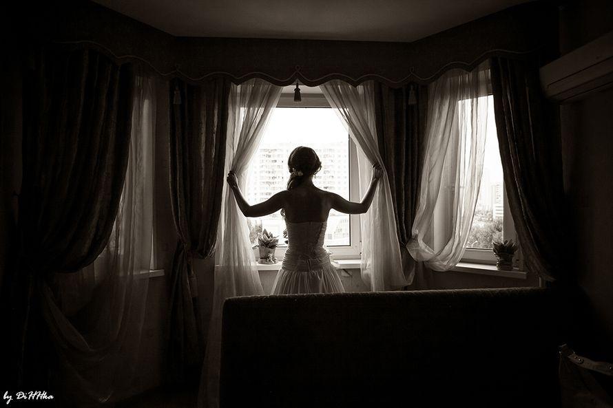 Фото 2596523 в коллекции Вдохновение.. - Фотограф Бурилина Александра