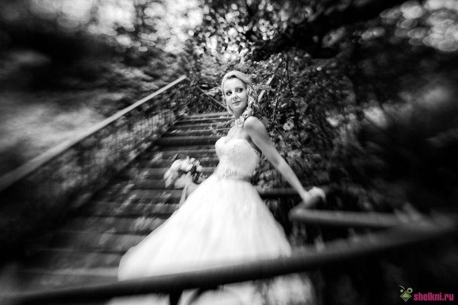 Фото 12595910 в коллекции Портфолио - Фотограф Валерий Зонов
