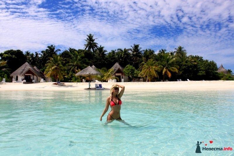 Фото 104339 в коллекции Мальдивы  -  идеальное место для медового месяца. - barbie