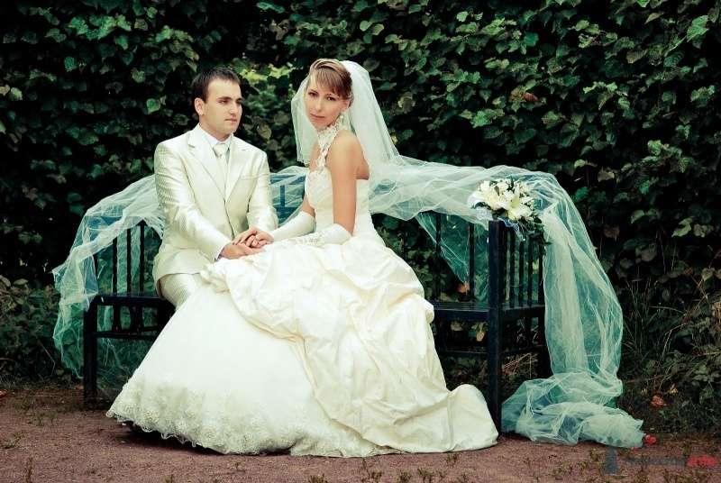 Жених и невеста сидят, прислонившись друг к другу, на скамейке в парке - фото 45912 musti