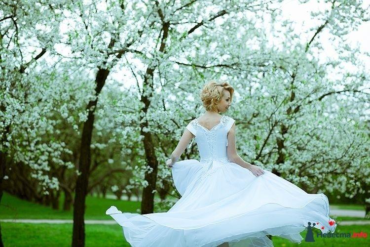 Фото 111157 в коллекции Мои фотоработы (Wedding)