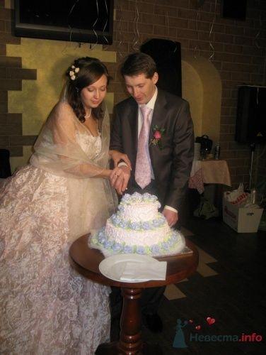 режем тортик. (и каравай и тортик были очень вкусными, но.. почему на тортике оказались голубые цветочки, а заказывали сиреневые... но вкус все равно потрясный) - фото 22921 Horsy
