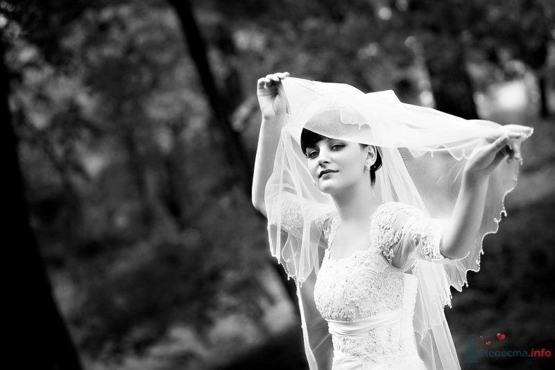 Невеста в белом платье стоит посреди леса - фото 58925 jasmine