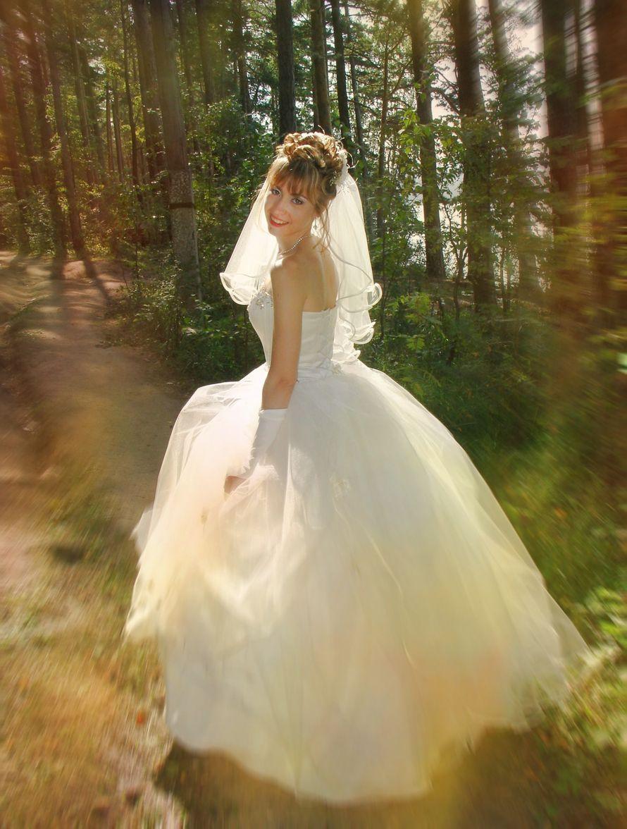 Фото 6820648 в коллекции Свадебные - Фотограф Геннадий Галанов